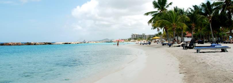 Mambo - Seaquarium Beach