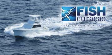 Fish Curacao