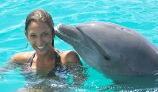 Tip! Zwemmen met Dolfijnen